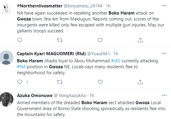 Boko Haram invades Gwoza in Borno state