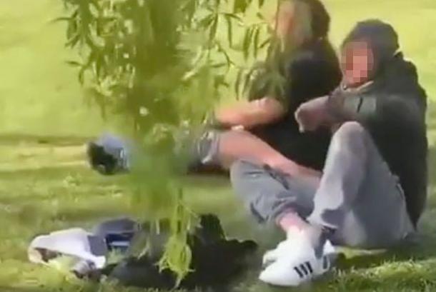 Couple filmed having sex in park in front of kids (video)