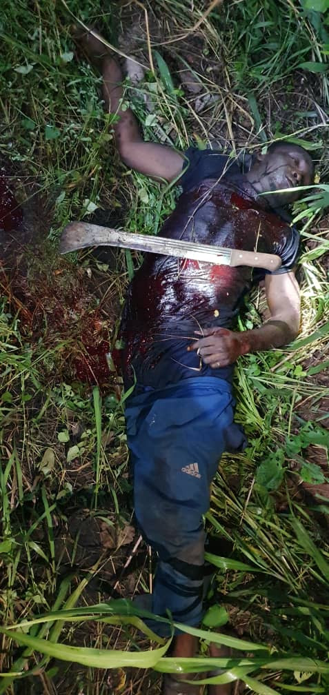 Two armed robbery suspects shot dead during an operation in Ogun (graphic)