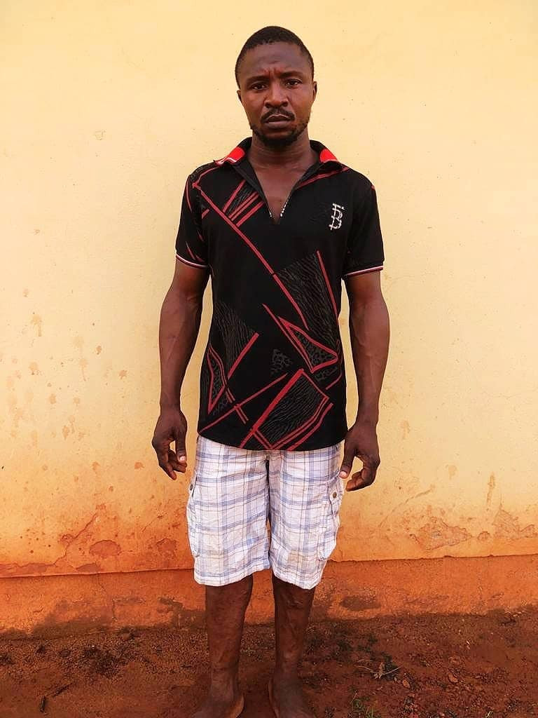 Police arrest 16 suspected members of Vikings Confraternity, recover ammunition in Enugu