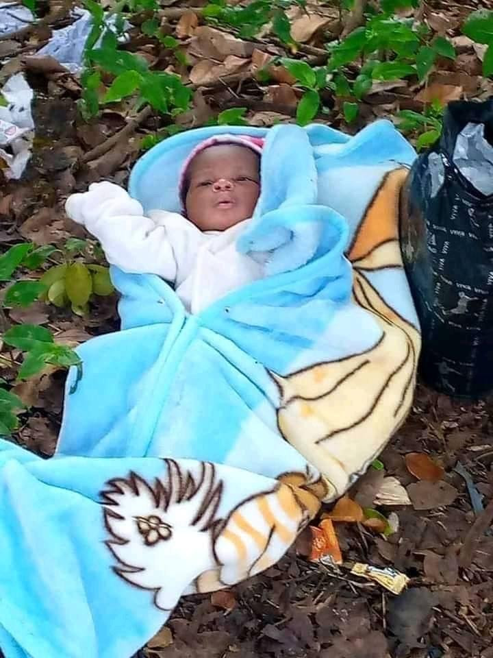 Abia University students rescue newborn baby found abandoned on farmland