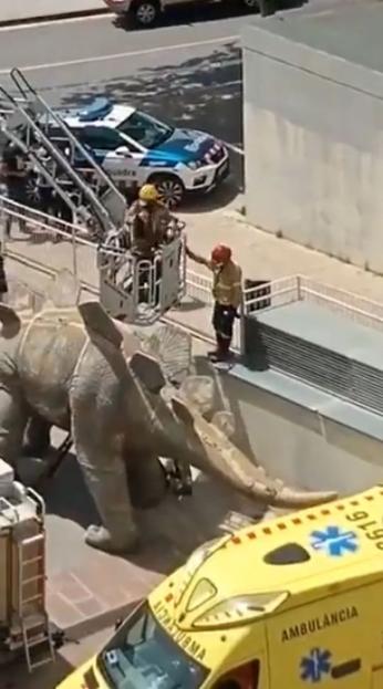 Dead body of missing man found inside giant dinosaur statue