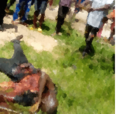 Suspected suicide bomber blows himself up in Ebonyi (photo/Video)