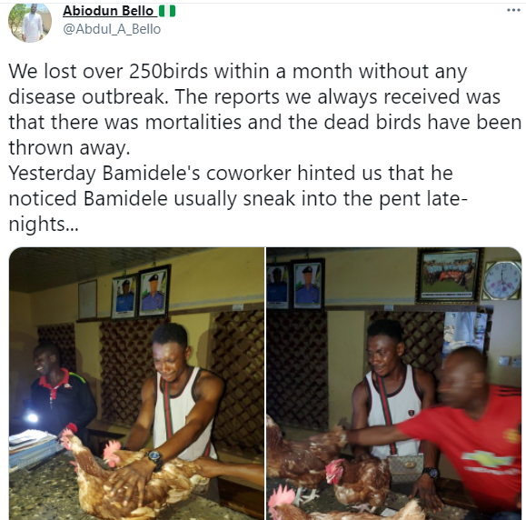 Man who sneaks into chicken farm at night cries in police station as he