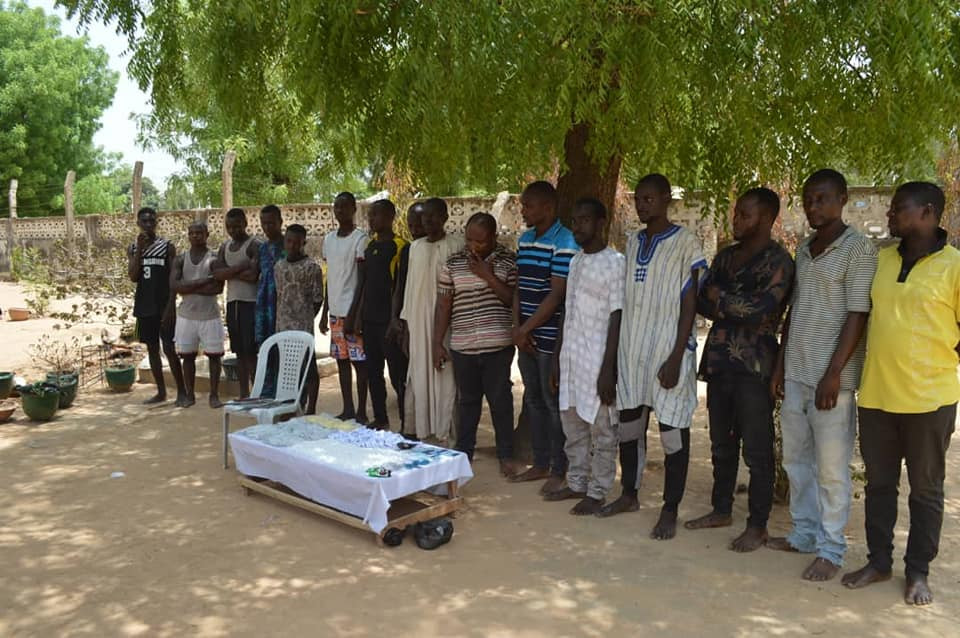 Police arrest 42 notorious thugs, 21 drug dealers, recover dangerous weapons and illicit drugs worth over N32m in Kano