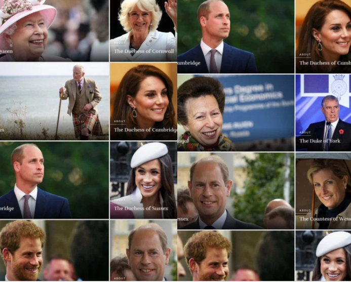 Harry and Meghan ?demoted? below Prince Andrew, and other royals on royal family website