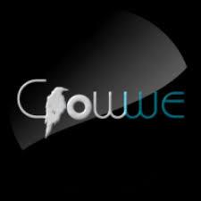 Google deletes Adamu Garba?s Crowwe app from Play Store
