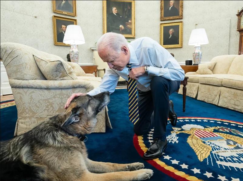 US President Biden announces death of family dog, Champ
