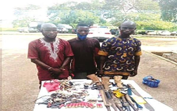 Police arrest three suspects for killing six cows, injuring 13 others in Oyo