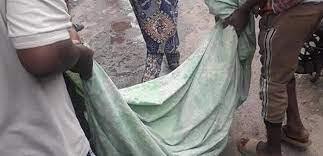 ?Sanwo-Olu orders investigation into killing of 14-year-old girl during Yoruba Nation Rally