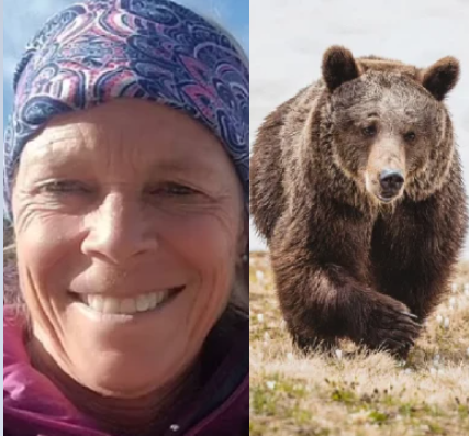 Camper, 65, pulled out of tent and mauled to death by grizzly bear