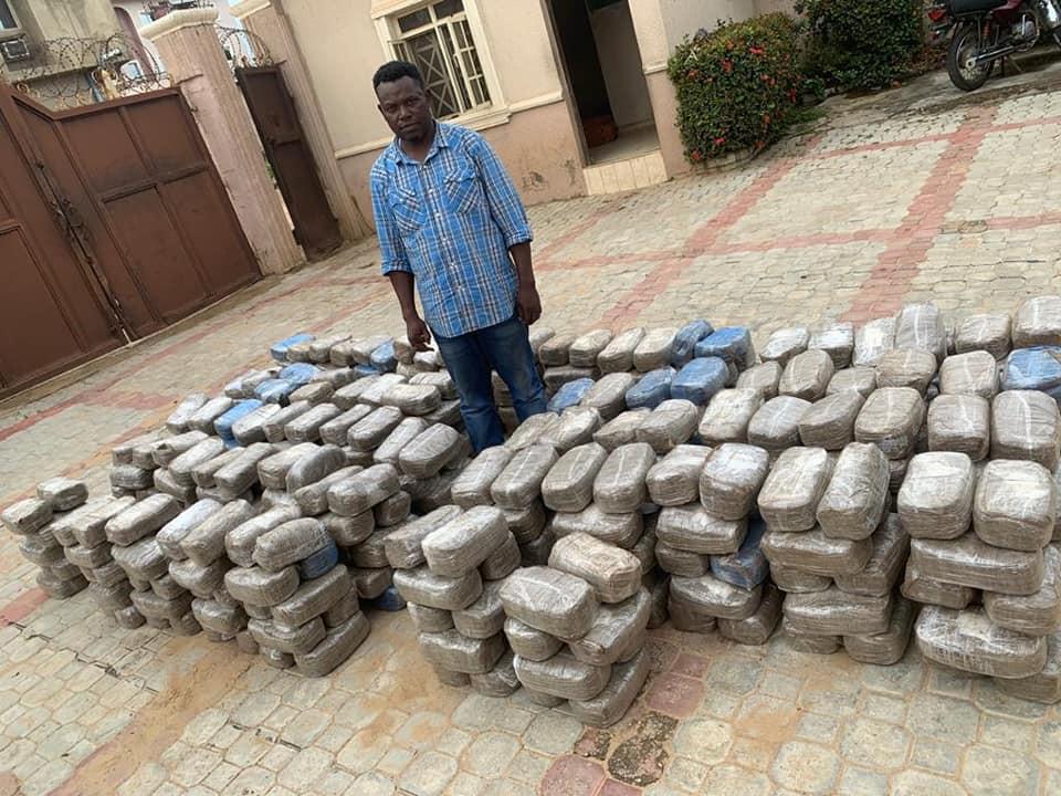 NDLEA busts interstate drug cartels in Kogi, Nasarawa, Benue, arrests seven kingpins