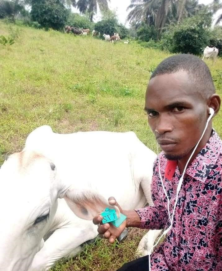 Police declare man wanted for allegedly stealing 89 cows in Akwa Ibom