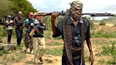 Two kidnappers killed by vigilantes while collecting ransom in Taraba?