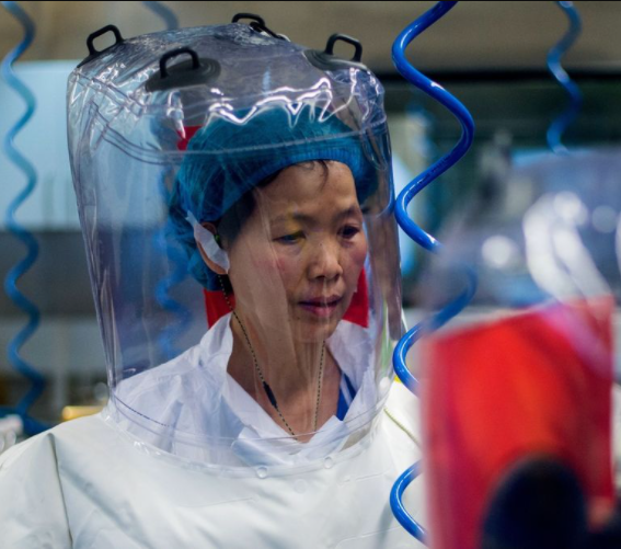 Scientist from Wuhan lab warns more deadly variants of coronavirus are set to emerge
