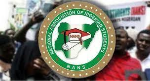 NANS asks FG to declare bandits as terrorists