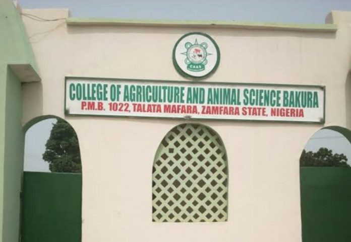 Four security officials allegedly killed as gunmen abduct students and teachers in Zamfara College of Agriculture