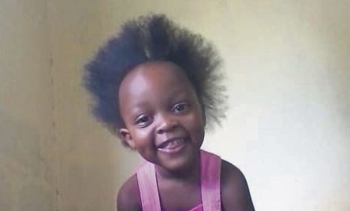 4-year-old girl mauled to death by two pit bulls in South Africa