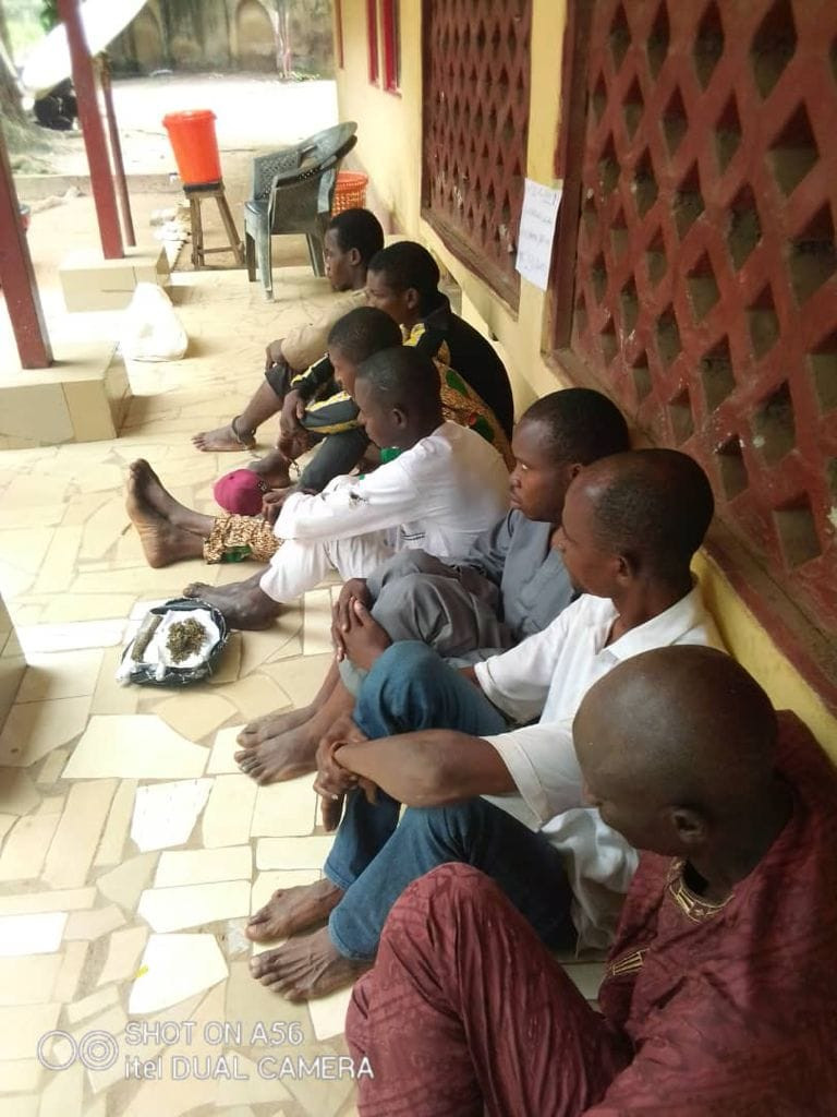 NDLEA arrests 22-year-old Corps member in Abuja for importing drugged candies from the UK