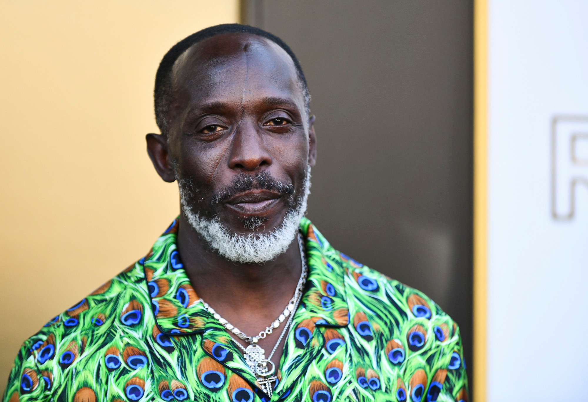 The Wire' Actor, Michael K. Williams dies of suspected heroin overdose at 54