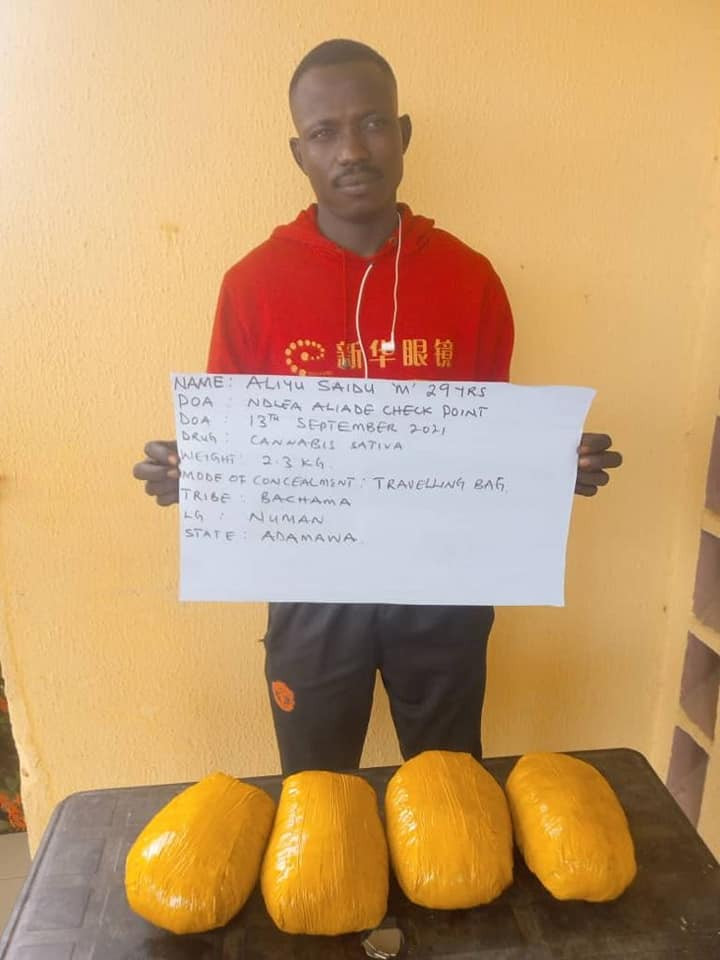 NDLEA arrests Italy-bound lady and pregnant woman for drug trafficking