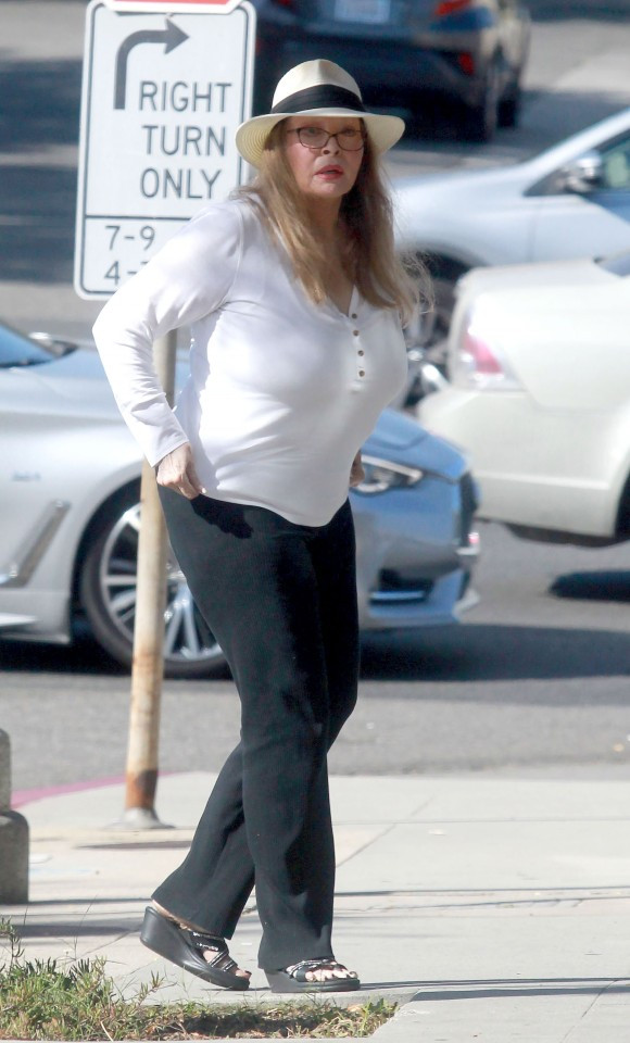 Former American s3x symbol, Raquel Welch spotted for the first time in two years