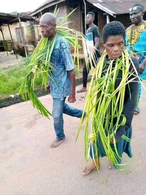Family in Imo state kill and bury their son for being too stubborn (videos)