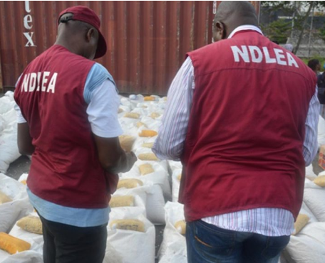 NDLEA arrests police, immigration officers and others;?seizes illicit drugs