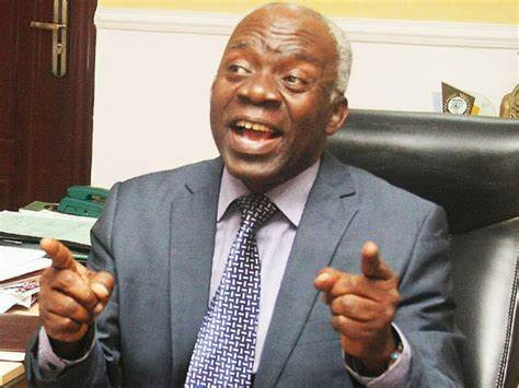 #EndSARSMemorial: Only governors have power over rallies - Falana tells police